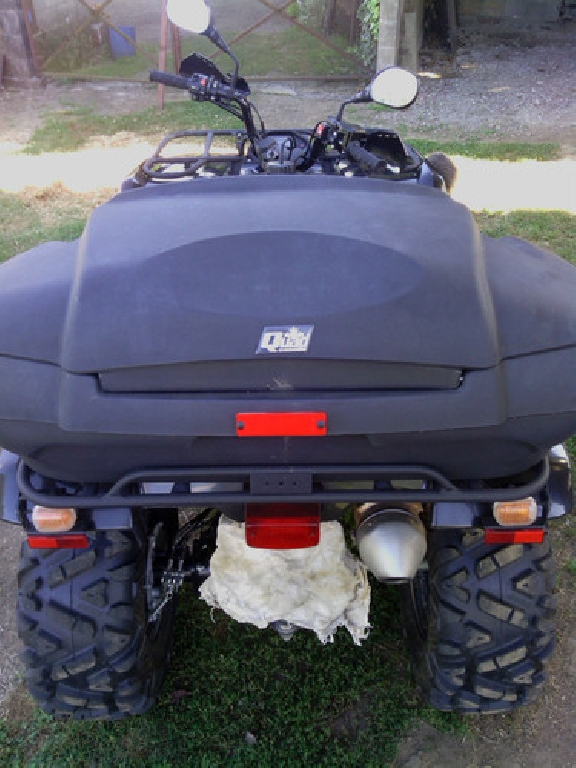 YAMAHA Grizzly 350 2x4 2008 photo 2