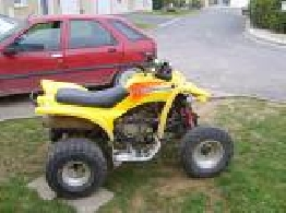 Quad ADLY Interceptor 300  occasion