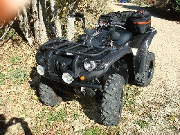 Quad YAMAHA Grizzly 550 camo occasion