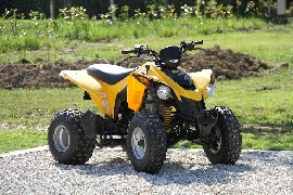 Quad CAN-AM BOMBARDIER DS 250  occasion